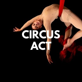 Circus Performer Job - Circus Performer Required For Circus Teaching School In Sweden - 10 October 2021 - €1000 Per Week
