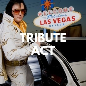 Elvis Impersonator Required For Wedding In Belfast - 18 June 2021