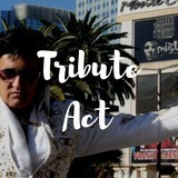 Elvis Tribute Act Required For Fundraiser Event In Liverpool - 17 October 2020 image